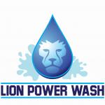Lion Power Wash