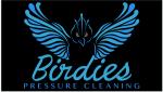 Birdies Pressure Cleaning