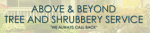 Above & Beyond Services Inc.